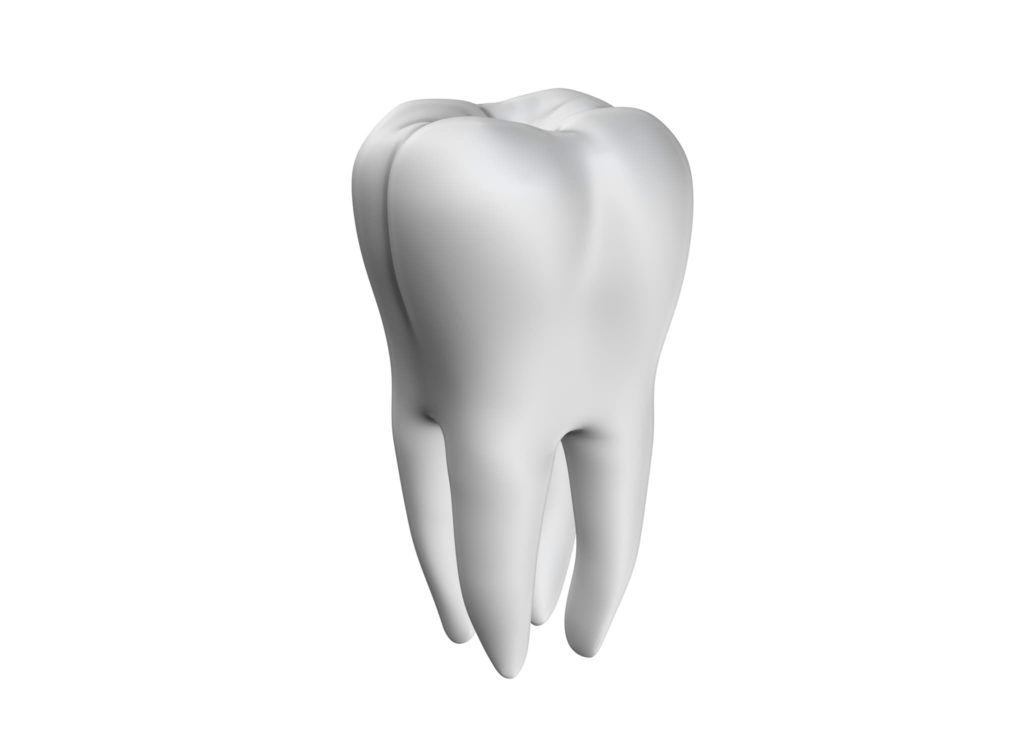 A white tooth on a white background